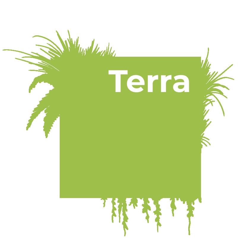Терракультур. Профессиональное озеленение